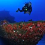 corveta---mergulho1123