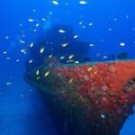 corveta---mergulho4123