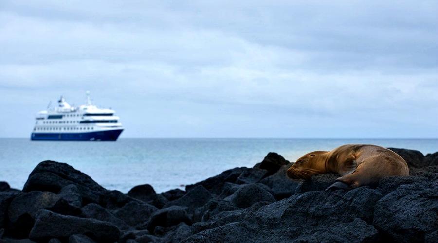 Cruzeiro em Galapagos