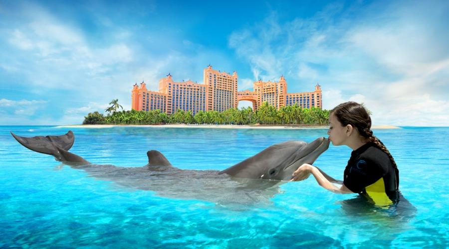 menina c golfinho